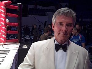 Sports announcer Michael (Let's Get Ready to Rumble!) Buffer